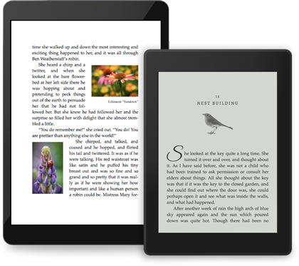 iPad and Kindle showing example pages with images